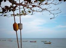Gelbe und weiße Bojen wird es in einem Baum durch das Meer angeschmiegt stockfotografie