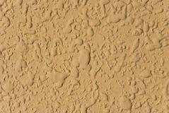 Gelbe Wand des Senfes Stockbilder