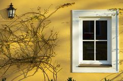 Gelbe Wand mit Fenster Stockbilder