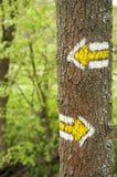 Gelbe wandernde Markierungen auf einem Baum in der Tschechischen Republik Lizenzfreie Stockbilder