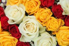 Gelbe, weiße und rote Rosen in einer Hochzeitsanordnung Stockbilder