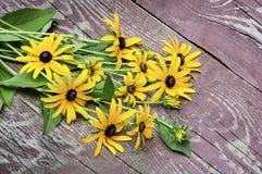 Gelbe wilde Blumen auf einem hölzernen Hintergrund Lizenzfreie Stockfotografie
