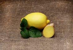 Gelbe Zitrone und Minze lokalisiert auf Hintergrund, Segeltuchgewebe Stockfotografie