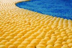 Gelbe Zitronen mit blauem Element Stockbild