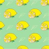 Gelbe Zitronen und Blätter des Gekritzels hinter Grün vektor abbildung