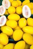 Gelbe zitronengelbe Melonen für Verkauf Stockbilder