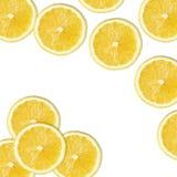 Gelbe Zitronenscheiben auf Weiß Stockbild