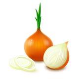 Gelbe Zwiebel auf weißem Hintergrund Lizenzfreie Stockfotos