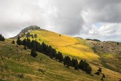 Gelber Berg Stockbild