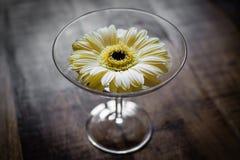 Gelber Blume Gerbera mit hölzernem Hintergrund Stockfotografie