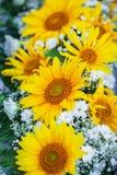 Gelber Blumenstrauß von Sonnenblumen stockfotos