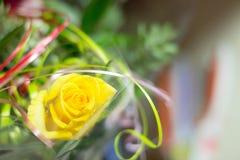 Gelber bunter Postkartenfeiertag der Blume stockfotografie