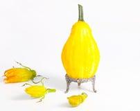 Gelber dekorativer Kürbis und Blumen stockfoto