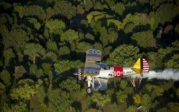 Gelber Doppeldecker über Bäumen lizenzfreie stockfotos