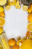 Gelber Fruchtporträtrahmen Lizenzfreies Stockfoto