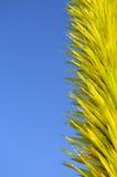 Gelber Glasaufbau mit Himmel lizenzfreie stockbilder