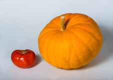Gelber großer Kürbis und rote Tomate stockfotos