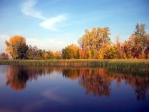 Gelber Herbstwald reflektiert im Fluss Lizenzfreies Stockfoto