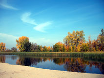 Gelber Herbstwald reflektiert im Fluss Stockbild