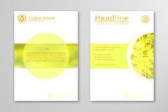 Gelber Jahresberichtgeschäftsbroschürenfliegerdesign-Schablonenvektor Stockbild