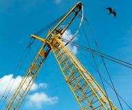 Gelber Kran und Seemöwe gegen blauen Himmel Stockbilder