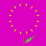 Gelber Kreisrahmen von Blumenblättern auf rosa Hintergrund und grünem Blatt Flaches Bild Stockfoto