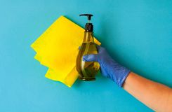 Gelber Lappen für das Säubern des Hauses wird durch weibliche Hand im blauen Handschuh auf blauem Hintergrund, natürliches Licht, stockfoto