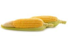 Gelber Mais mit Blatt auf Weiß Lizenzfreie Stockfotografie