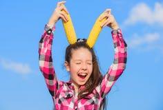 Gelber Maiskolben des Kindermädchengriffs auf Himmelhintergrund Reife Körner des netten Griffs des Mädchens Maisvegetarier und ge stockfotos
