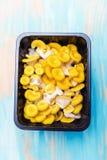 Gelber Pleurotus im schwarzen Plastikkasten stockfoto