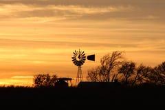 Gelber Sonnenuntergang Stockfotos
