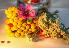 Gelber Specie und Blumen Stockfotografie