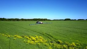 Gelber Streifen und Traktor der blühenden Pflanze, die Feld mit Chemikalien besprüht stock video footage