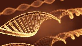 Gelber transparenter Ribonuclein- Säure- oder DNA-Strang Stockfoto
