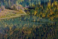 Gelber und grüner Herbst Lizenzfreies Stockfoto