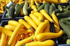 Gelber und grüner Kürbis für Verkauf. Stockfotografie