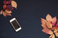 Gelber und roter Fall lässt Herbsthandyhintergrund lizenzfreie stockfotos