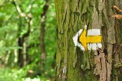 Gelber und weißer Wanderweg unterzeichnet Symbole auf Baum Lizenzfreie Stockfotografie