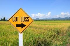 Gelber Verkehrszeichentext für Endverlust und grüne Rückseite des ungeschälten Reises Stockbilder