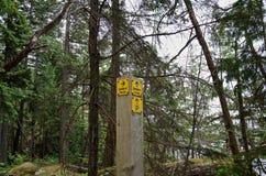 Gelber Wegweiser im Regenwald stockfotos