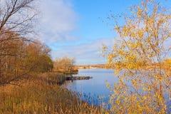 Gelber Weiden- und Steindamm auf einem Fluss bellen Stockfoto