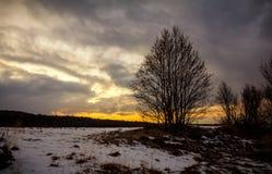 Gelber Wintersonnenuntergang über schneebedecktem Feld mit Bäumen Lizenzfreie Stockfotografie