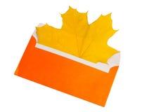 Gelbes Ahornblatt im orange Umschlag Lizenzfreie Stockbilder
