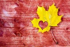 Gelbes Ahornblatt mit Herzform stockfoto