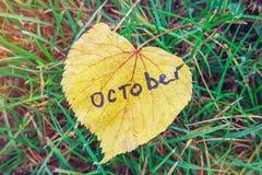 Gelbes Blatt mit Aufschrift OKTOBER gelbes Blatt gegen Hintergrund des grünen Grases Symbol von Oktober ist Herbst Stockbild