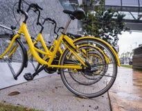 Gelbes Fahrrad für Miete stockfoto