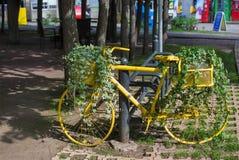 Gelbes Fahrrad mit Efeu Lizenzfreies Stockfoto