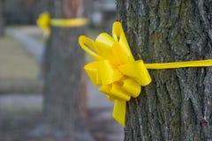 Gelbes Farbband um einen alten Eichen-Baum 2 Stockfoto