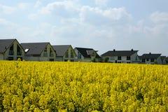 Gelbes Feld - weiße Häuser Stockfotografie