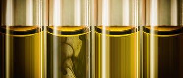 Gelbes flüssiges Maschinenöl in den Glasrohren Lizenzfreies Stockfoto